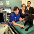 ALL SYSTEMS GO AT NEW VETERINARY HOSPITAL